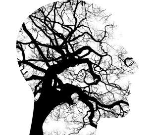 mental-health-2313430_960_720.jpg